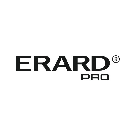 Canon Staples 2 x 2000 Reference: 0250A013